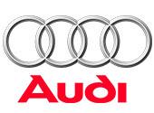 04 Parteneri Audi